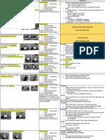 resumen cinesiologia 2