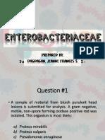 Enterobacteriaceae Q&A