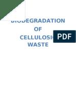 Bio Degradation of Cellulosic Waste 1