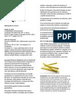 Bibliografía de Revista