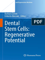 Dental Stem Cells Regenerative Potential