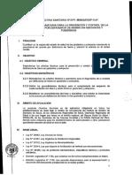Anemia Gestantes y puerperas 2016.pdf