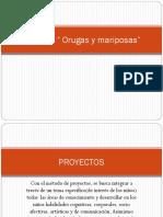 Proyecto Orugas y Mariposas
