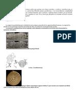 Imatges Geometria Sagrada- Imprimir-plastificar