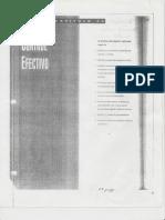Control Efectivo- Procesos de Control