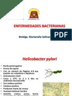ENFERMEDADES BACTERIANAS 5