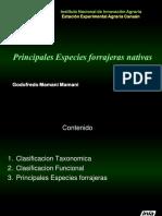 Anexo 1.1 Principales Especies Forrajeras Nativas
