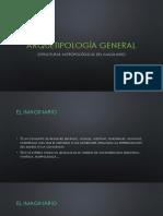 ARQUETIPOLOGÍA GENERAL, ESTRUCTURAS ANTROPOLÓGICAS DEL IMAGINARIO.pptx