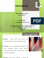 Trombosis Dina