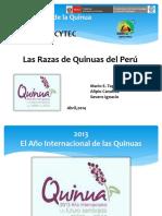 razas_quinua