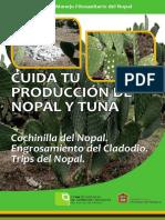 nopal.pdf