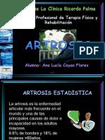 Art Rosis