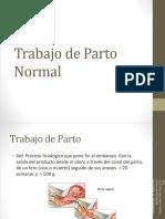 20120119 Trabajo de Parto Normal Corregido