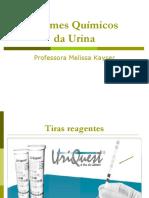 Exames Químicos Da Urina