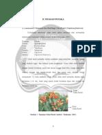 2BL00739.pdf