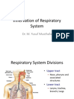 Innervation of Respiratory System