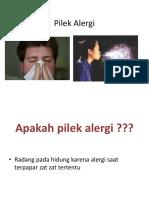 Pilek Alergi