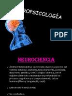 Evaluacinneuropsicolgica 120605231432 Phpapp01 (1)
