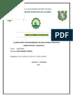 CLASIFICASION Y RECONOSIMIENTO DE ROCAS IGNEAS INTRUSIVAS.docx