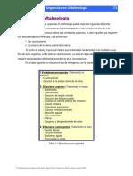 Urgências Em Oftalmologia 28 Pg