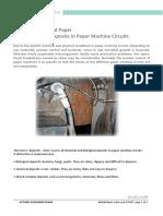 Biozideslimeandpapermikrobiologischeablagerungsthematikinpapiermaschinenkreislufen Englisch