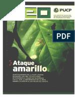escaneo revista.pdf