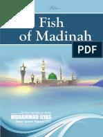 The Fish of Madinah