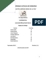 Informe Final Te Llega Delivery