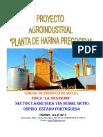Proyecto Planta de Harina Precocida Finca La Aparición Jul_2017 COMPLETO
