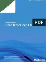Hero Report