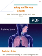 respiratory and nervous system presentation