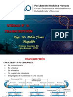 transcripcion (2)