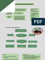 DIAPOSITIVA-DE-BIOTECNOLOGIA.pptx