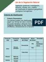 Clasificación de la vegetación.ppt