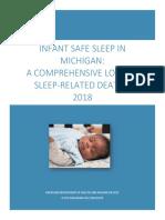 Michigan's Infant Safe Sleep Report