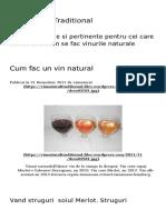 Cum Fac Un Vin Natural _ Vin Natural Traditional