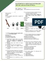 Prueba Diagnostica Grado 6