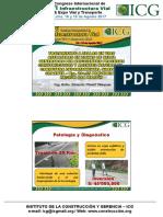 d2_sab_p01.2_e_pinchi_tratamiento a Fallas en Vías Asfaltadas en Zonas de Selva