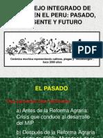 3. Historia Delmip Peru