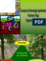 1. Concepto Etimologia.pdf