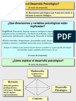 presentación desarrollo