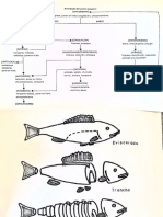 Introduccion a La Tecnologia de Productos Pesqueros