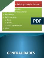 143970354-Perineo-Vb.pptx