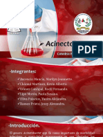 Acinetobacter Spp Expo Bacteriología