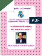 Analis de La Obra Ceba Toribio Casanova