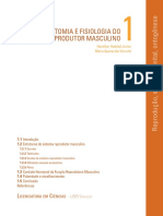 Anat.e Fisiol.sistema Reprodutor Masculino 19pg
