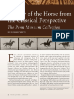 A View of the Horse From Classical Perpective