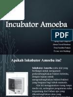 Incubator Amoeba Presentasi(1).pptx