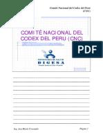Como Acceder a La Informacion Codex01