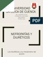 Diureticos y Nefropatias